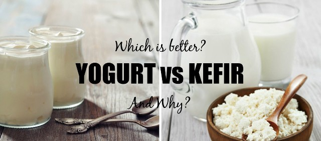 Kefir vs Yogurt