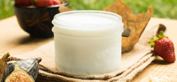 FAQ for Simply Kefir