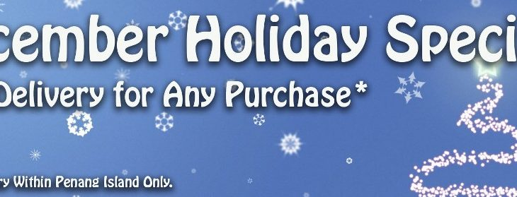 December Holiday Promotion